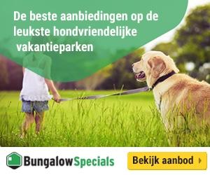 bungalowspecials met hond